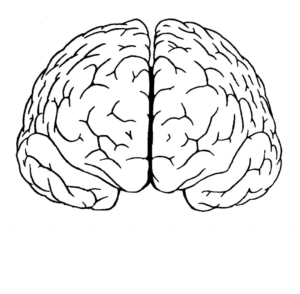 This was the frontal view of my brain